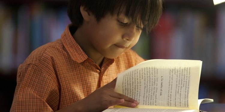 Habituar a los niños en la lectura es una obligación de la familia.