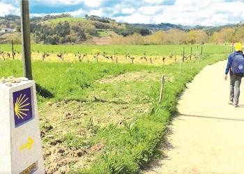 El Camino de Santiago congrega a miles de peregrinos en cualquier época del año.