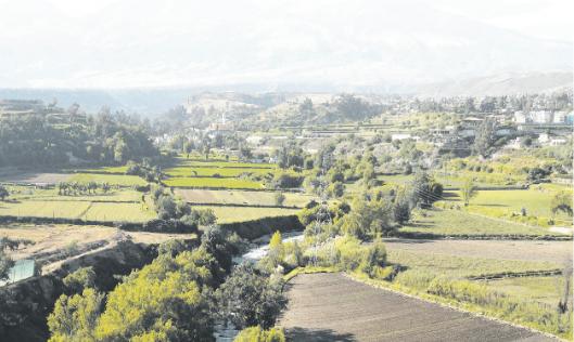 Arequipa conserva una importante área verde agrícola, pero con los años esta se ha reducido por la expansión urbana.