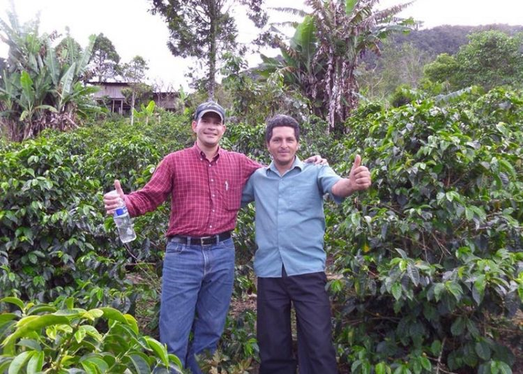 Junto a José Herrera, productor de la finca El Ciprés, nombre que recibe porque el café siempre estuvo rodeado de estos árboles en Cajamarca.