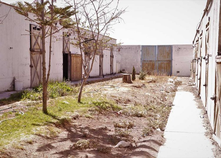 Las caballerizas que fueron construidas para albergar a más de 400 ejemplares, hoy lucen abandonadas.