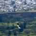 Vuelo del cóndor. Ave de rapiña que planea por todo el valle, sale en las mañanas para buscar comida, alejándose kilómetros de su nido.