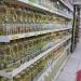 El aceite vegetal para cocina, es uno de los productos que subió más de precio en las últimas semanas.