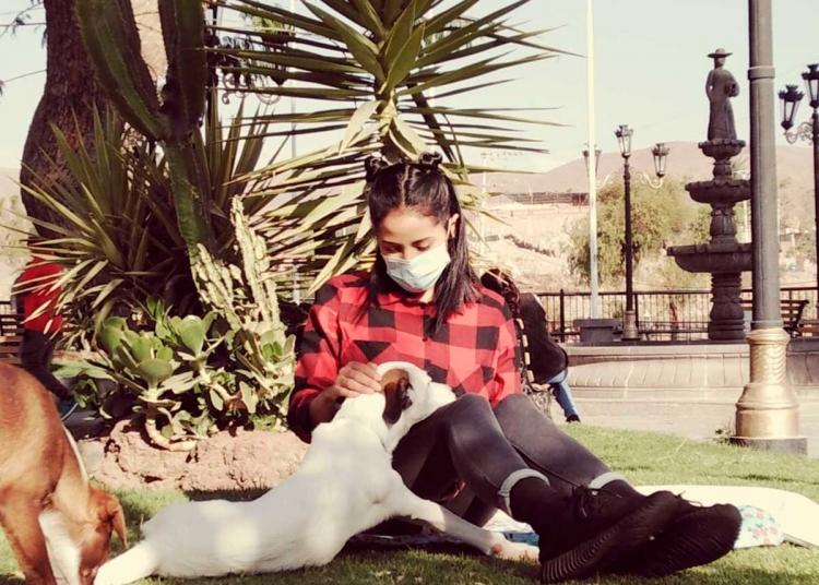 Muñeca es una de las coterapeutas de la especialista.
