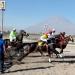 El Festival hípico, contó con cinco carreras, destacando el clásico Fundación de Arequipa y APCCA.